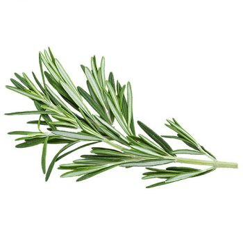 Rosemary/Spices