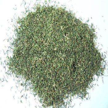 Dried Parsley leaves/ powder/parsley spice